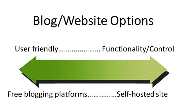 Website building platform options